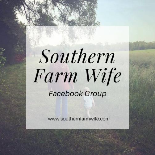 Southern Farm Wife (2)